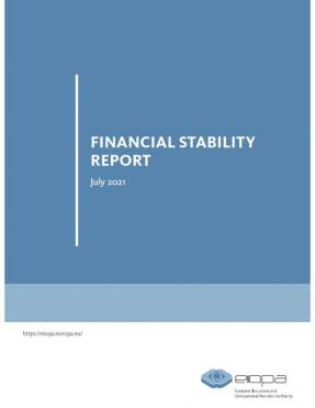 Financial stability report June 2021